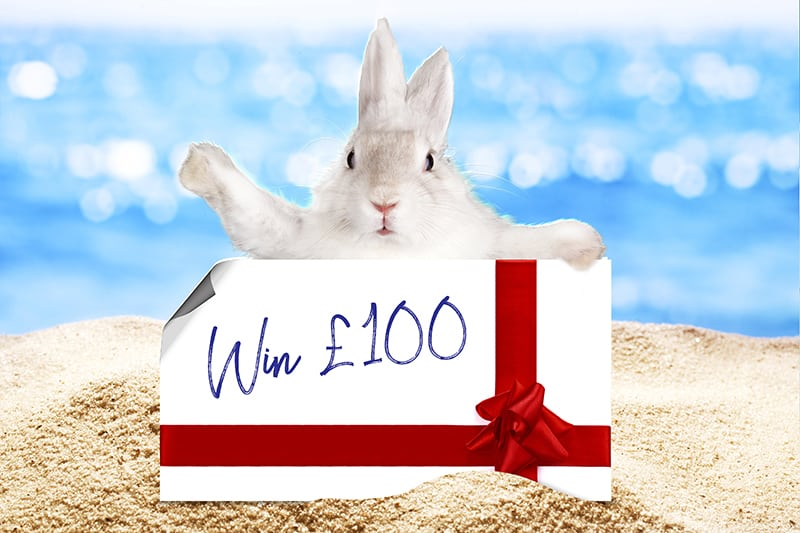 Enter our Easter Prizedraw: Easter bunny on a beach