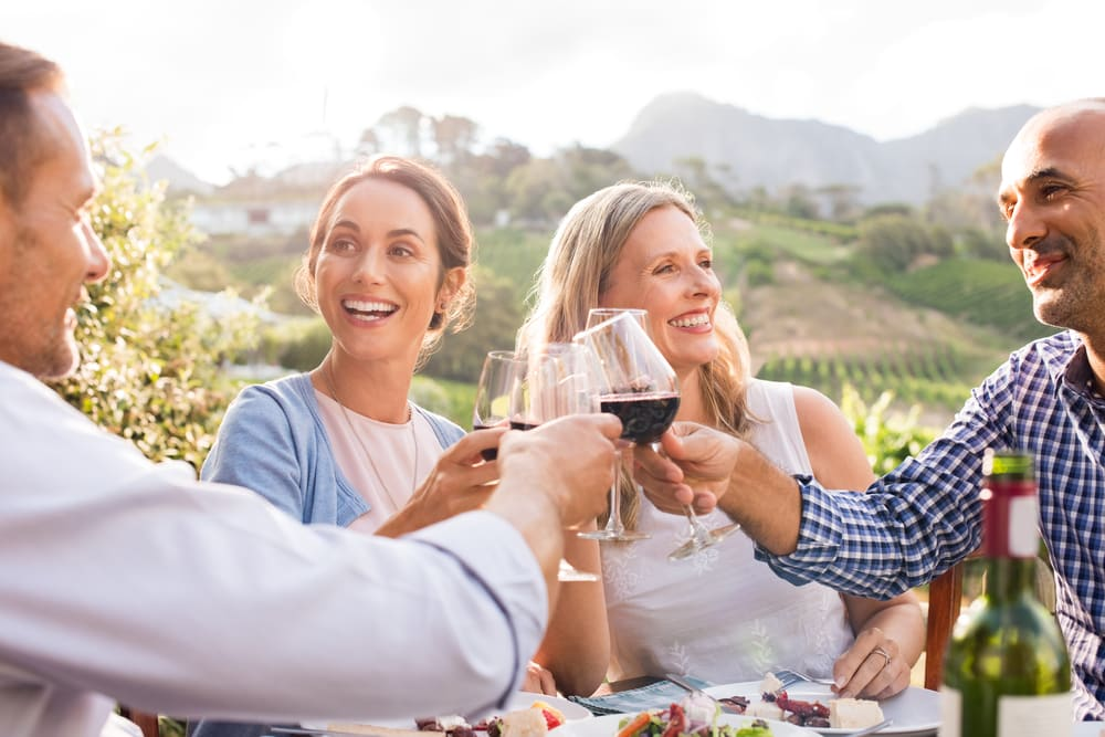 Top 5 wine tours in Europe: Mature friends enjoying wine tour on holiday