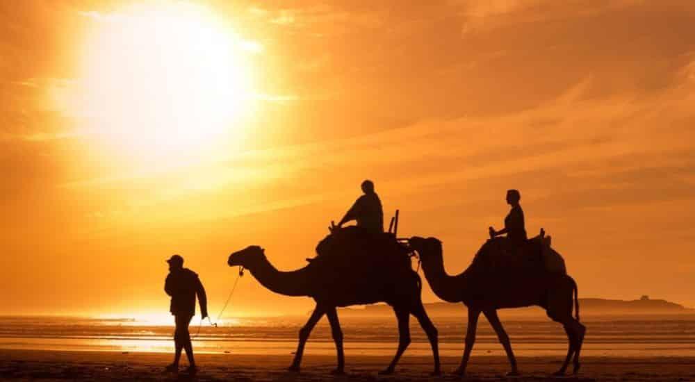 The-Best-Desert-Holiday-Destinations-on-Earth- Camel Trek