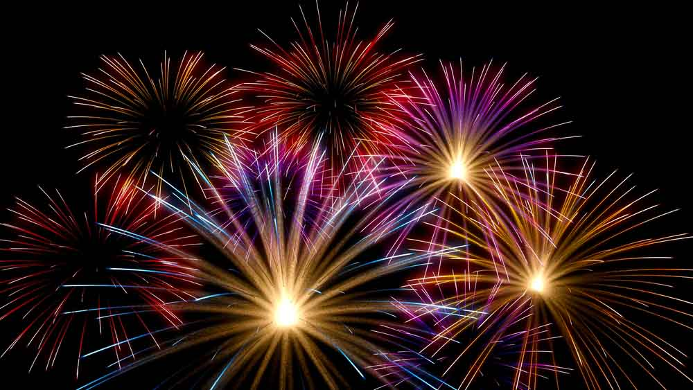 Protect Your Pets - Firework Night | AllClear Travel Blog