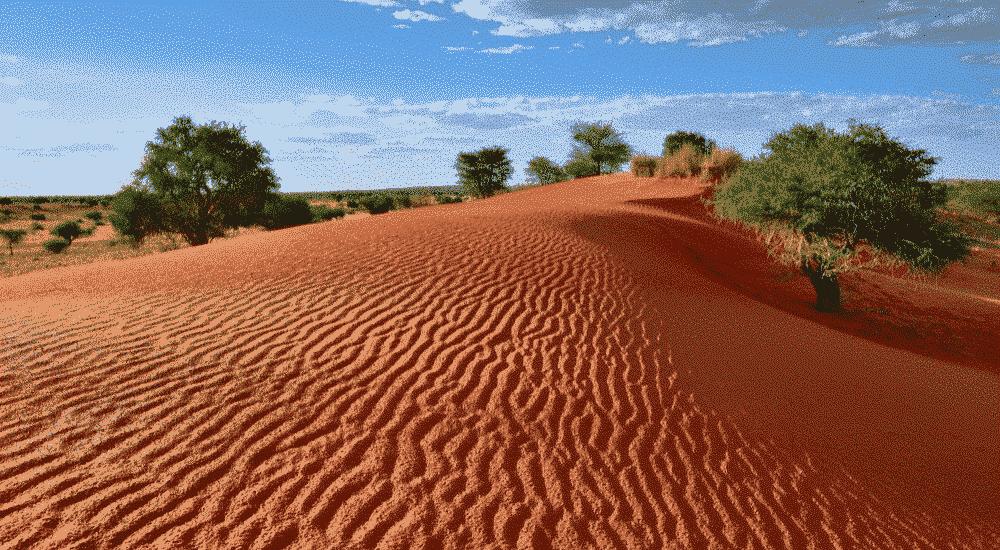 Kalahari-Desert | AllClear Travel Blog