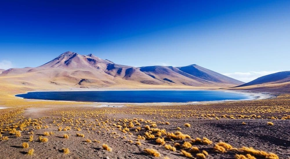 The-Best-Desert-Holiday-Destinations-on-Earth-Amazing-Lake-Miscanti-in-the-highlands-of-Chile-near-San-Pedro-de-Atacama | AllClear Travel Blog