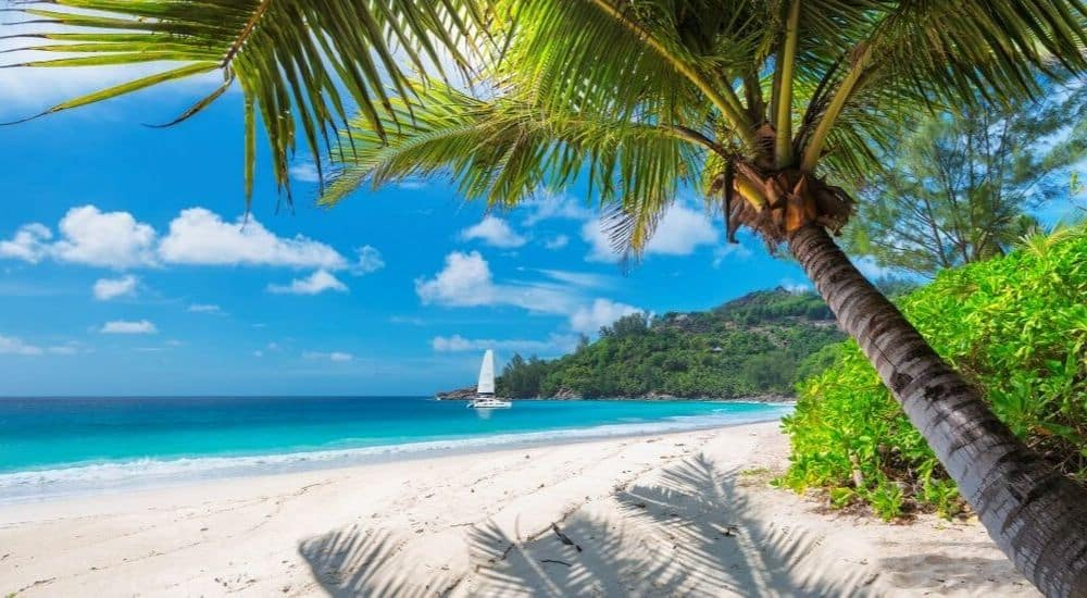 The-Best-Sailing-Experiences-Around-the-World-Caribean-AllClear Travel