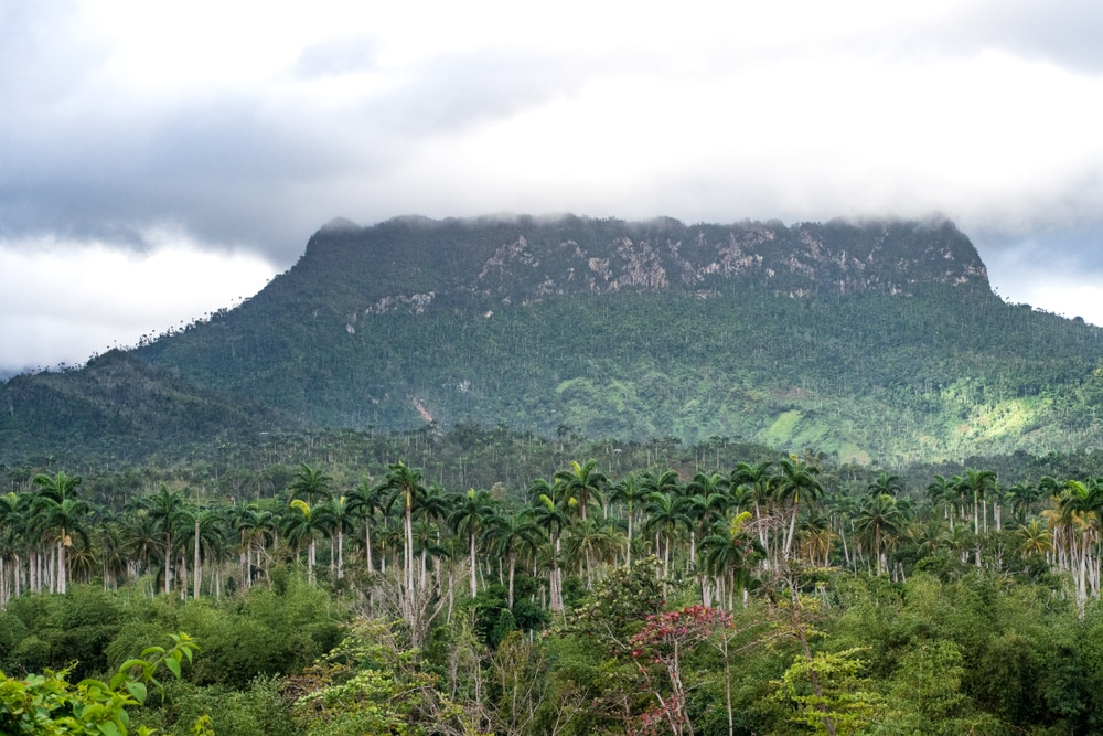 Cuba for the over 50s traveller: El yunque mountain