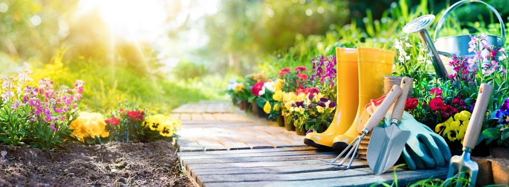 6 Gardening tips for while you're on holiday: gardening equipment